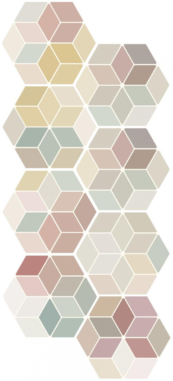 Minima 8.6 - Multi Color